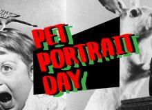 PAVED Arts' Pet Portrait Fundraiser
