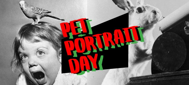 PAVED Arts' Pet Portrait Fundraiser